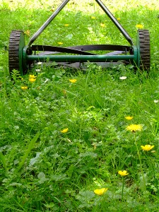 bigstock_Old_Lawn_Mower_2282574