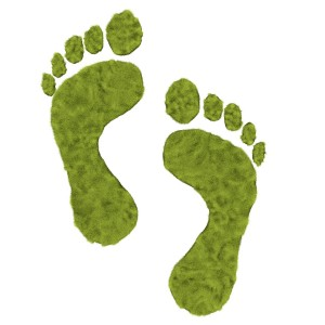 bigstock_Green_grass_foot_print_7211956