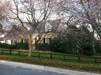 Locust Hill Estates, Cherry Blossoms