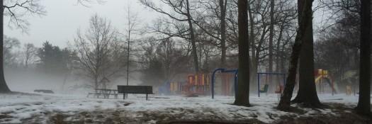 Foggy Lynbrook Park