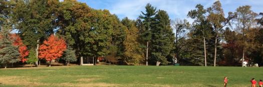 Lynbrook Park fall