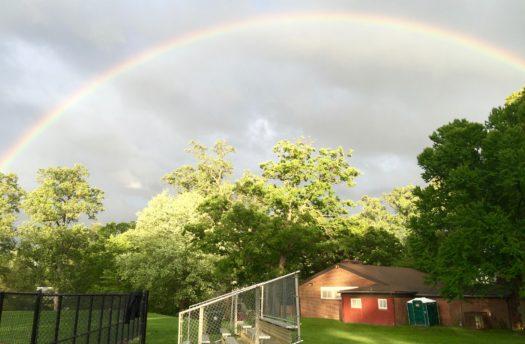 Lynbrook Park rainbow