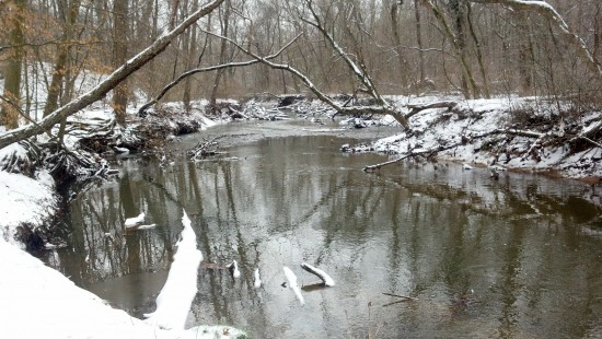 Rock Creek Park, January 2012